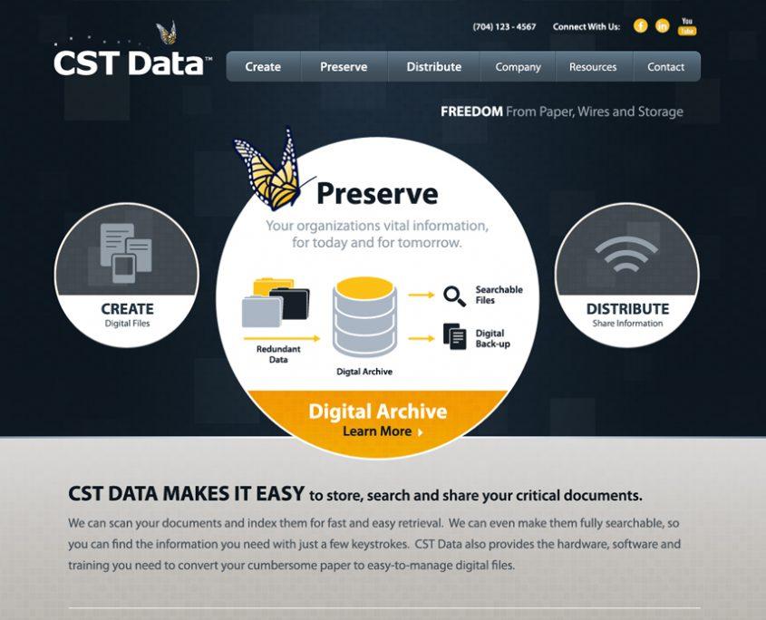 CST Data Web Design