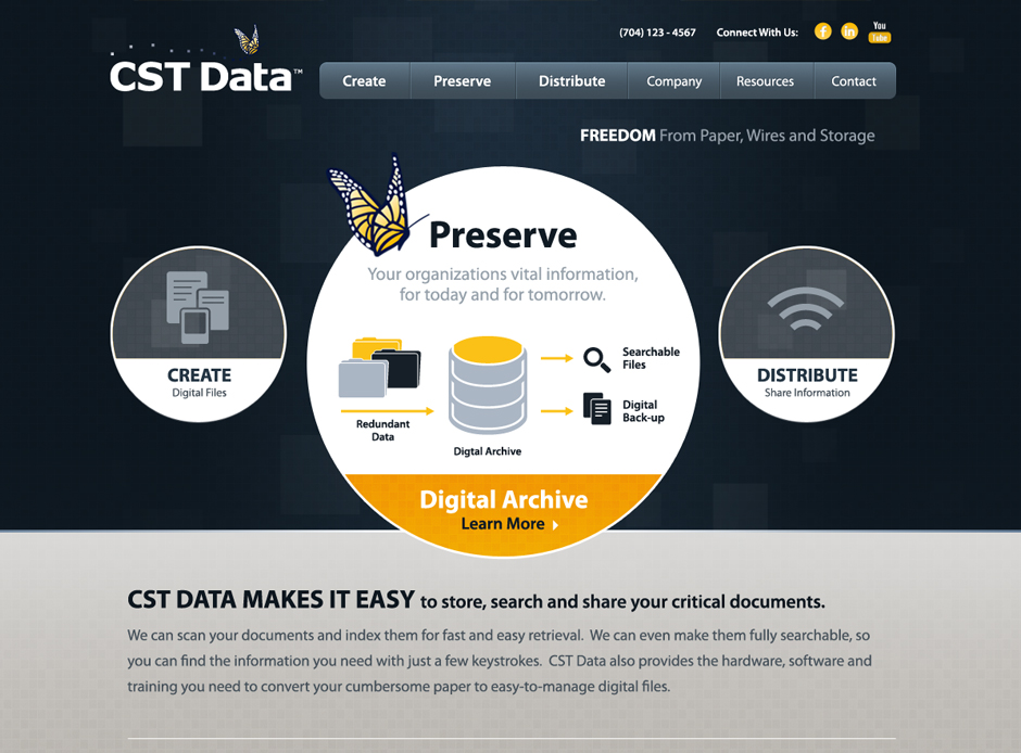 CST Data Web Design